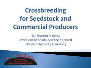 Crossbreeding for Seedstock and Commercial Producers